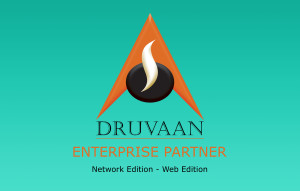 Enterprise Partner